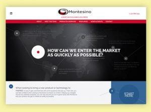 Montesino Website